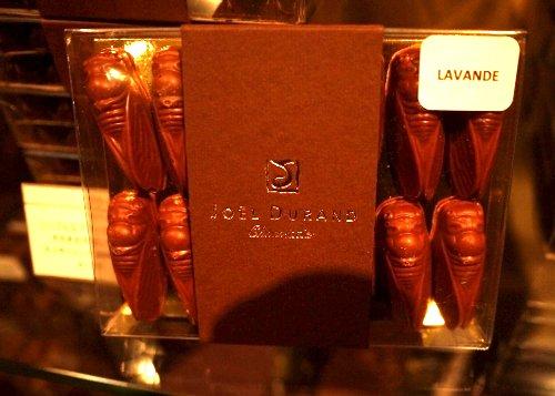 ■セミをかたどったチョコレート