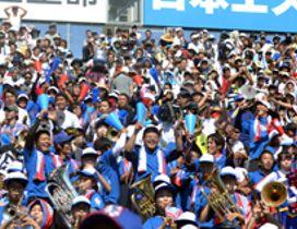 最上段まで埋まった三塁側の下関国際応援スタンド=18日、阪神甲子園球場