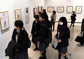 貴重な原画などが並ぶ「長くつ下のピッピの世界展」=15日午前、宮崎市・みやざきアートセンター