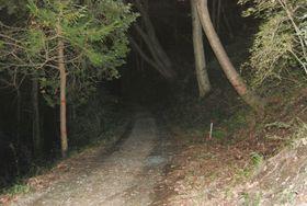 私立学校教員内田慎也容疑者を現行犯逮捕した山林内の道=25日夜、群馬県高崎市