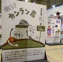 長野市立博物館の企画展で展示する「石ころパネル」