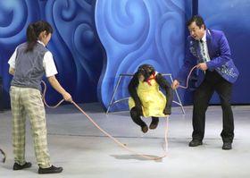 大縄跳びに成功したチンパンジーのプリンちゃん。右は「阿蘇カドリードミニオン」の宮沢厚園長=1日、熊本県阿蘇市