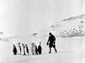 「日本南極探検」の1シーン(東京国立近代美術館フィルムセンター所蔵)