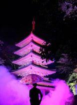 試験点灯で幻想的に照らされた国宝の五重塔(木津川市加茂町・海住山寺)=「LEXTRIBE inc」提供