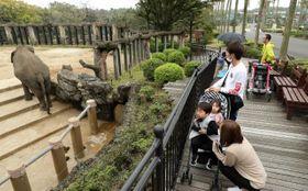 営業を再開した宮崎市フェニックス自然動物園=28日午後、宮崎市