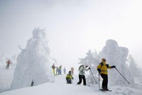 山形市の蔵王温泉スキー場でシーズンを迎えた冬の風物詩・樹氷。多くのスキーヤーなどでにぎわった=10日
