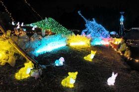 色とりどりの電飾が楽しめる会場=有馬富士公園