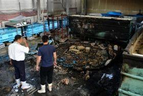 ウナギの養殖用水槽3基が燃えた火災跡=16日午前、神戸市西区