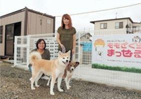 保護犬のドッグラン建設 視力失った猫の「イワシ」治療にCFで寄せられた善意活用