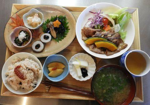 地元産の薬草ふんだんの薬膳料理 季節の体調変化に配慮したメニュー、京都・亀岡