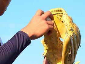 (資料写真)野球