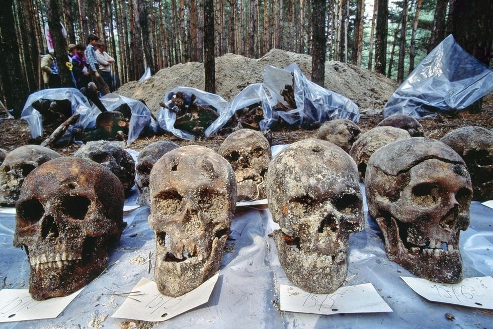 ロシア南西部ボロネジ近くの集団墓地で発見された人骨。スターリン時代に約4千人がこの場所で処刑されたとみられる。頭蓋骨には銃弾による穴がある=1990年(Hans-Juergen Burkard提供、共同)