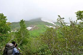 山頂方向には霧が掛かっていたが、山肌に広がる雪渓と木々のコントラストを楽しむことができた=大蔵村