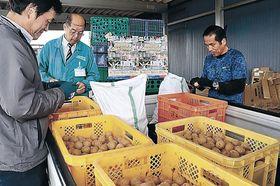 ジャガイモの下準備を行う実行委員=珠洲市飯田町
