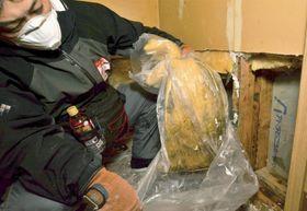 台風19号の浸水被害を受けた住宅で、壁から水分を含んだ断熱材を取り出すボランティア=18日、福島県いわき市