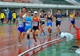 目標を目指して力走する選手=22日午前、富士市