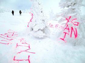 青森県・八甲田山系の樹氷や雪面に書かれた落書き=1月14日(八甲田ロープウェー提供)