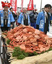 リヤカーに山積みのベニズワイガニ=19日、鳥取県境港市