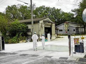 豚コレラウイルスの陽性反応が出た養豚場で防疫作業の準備をする関係者=22日午前、恵那市内
