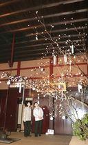 渡辺邸に飾られている「団子の木」=17日、関川村下関