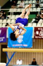 国体選手が演技を披露した体操カーニバル=16日、県総合運動公園