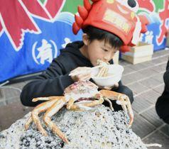 「おさかなロード」のズワイガニ「親ガニ」像=18日、鳥取県境港市