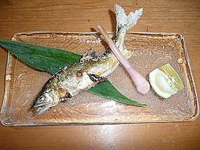 超お値打ち、岐阜の天然鮎塩焼