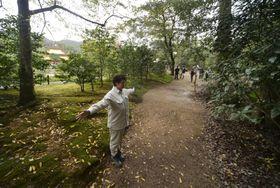 金閣寺(左奥)の前にある鏡湖池の南側で見つかった別の池跡(人物の右側)=11日午後、京都市