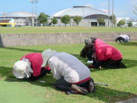弾道ミサイルの飛来を想定した住民避難訓練で、地面に伏せる参加者=2017年8月、熊本県上天草市