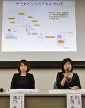 研究結果を発表する和歌山県立医大の石田裕子講師(右)ら=29日午後、和歌山市
