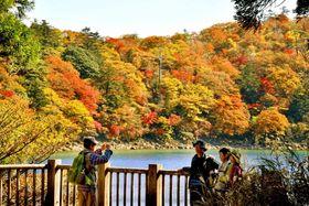 六観音御池周辺の紅葉=8日、えびの市のえびの高原