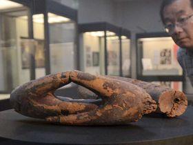 さまざまな仏像の手が展示されている会場(京都市右京区・佛教大宗教文化ミュージアム)