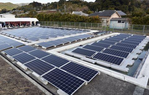 廃校のプールに設置された太陽光パネル=18日午前、鹿児島県南さつま市