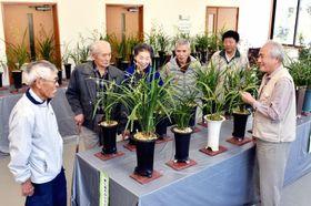 会員や来場者と一緒にランを観賞する前之園敬一郎さん(左から2人目)=錦江町田代麓