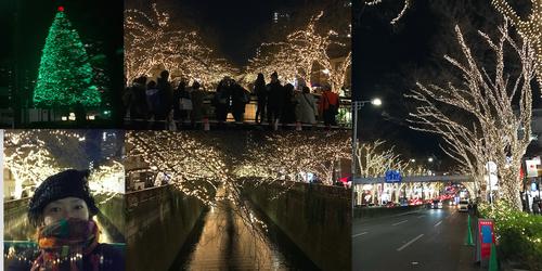 目黒川と表参道の煌びやかなイルミネーションとホテルオークラのツリー