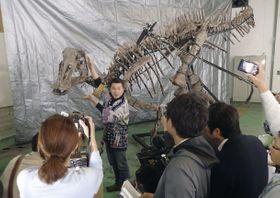 「むかわ竜」について新種の可能性が高いと説明する北海道大総合博物館の小林快次教授(奥)=18日、北海道むかわ町