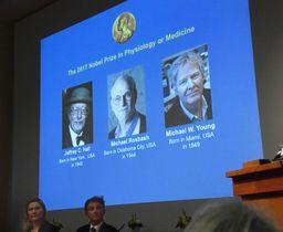ノーベル医学生理学賞の発表会場に映し出された(左から)ジェフリー・ホール氏、マイケル・ロスバシュ氏、マイケル・ヤング氏=2日、ストックホルム(AP=共同)