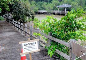 老朽化で木製の橋が折れて観光客がけがをし、立ち入り禁止となっている川満漁港遊歩道=13日、宮古島市下地川満