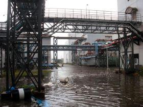 約60センチの浸水があった武庫川下流浄化センター=9月4日、尼崎市平左衛門町(兵庫県提供)