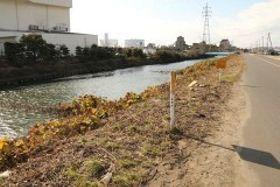 乗用車が転落した汐入川=倉敷市水島川崎通、11日午前11時54分
