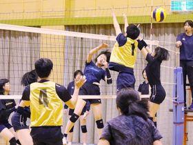 最終調整で軽快な動きを見せる岡山シーガルズの選手たち=山陽ふれあい公園体育館