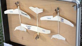 全日本紙飛行機選手権
