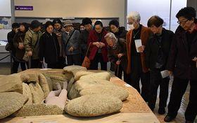 実際に発掘された石を使い再現された「石棺墓」をのぞき込む来場者たち