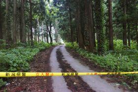 女性の遺体が見つかった現場付近の山林=12日、新潟県十日町市