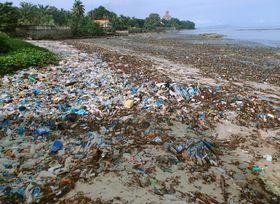 アフリカ・ギニアの海岸に打ち上げられた大量のプラスチックごみ。問題は発展途上国でも深刻化している=2017年9月(共同)