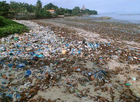 国連、海のプラごみ削減へ新組織