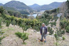 大村湾に浮かぶ前島で果樹の手入れをしながら暮らす橋沢征夫さん。背景の山は時津町本土=時津町子々川郷