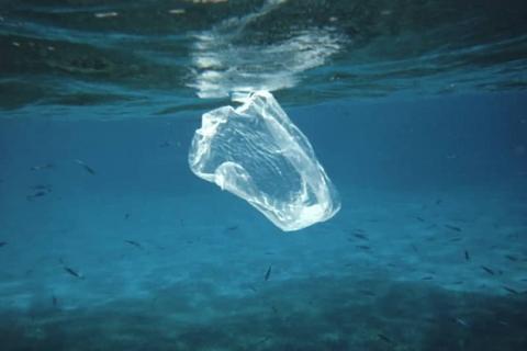 海に浮かぶレジ袋のごみ(米海洋大気局提供)