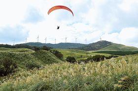 秋風に揺れるススキの大草原を上空から観賞するパラグライダー=東伊豆町の細野高原