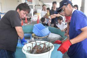 旬の味覚が市価より安く販売され、多くの人でにぎわった青島漁協いせえび祭り